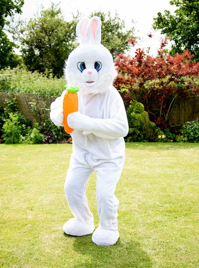 Funforce party Easter Bunny kids birthday festival Norfolk