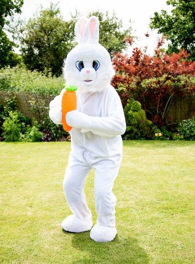 Funforce party Easter Bunny kids birthday festival Norfolk